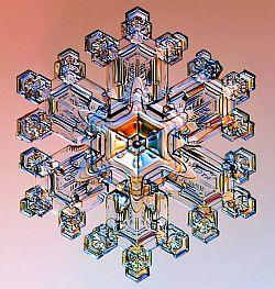 cristallacqua